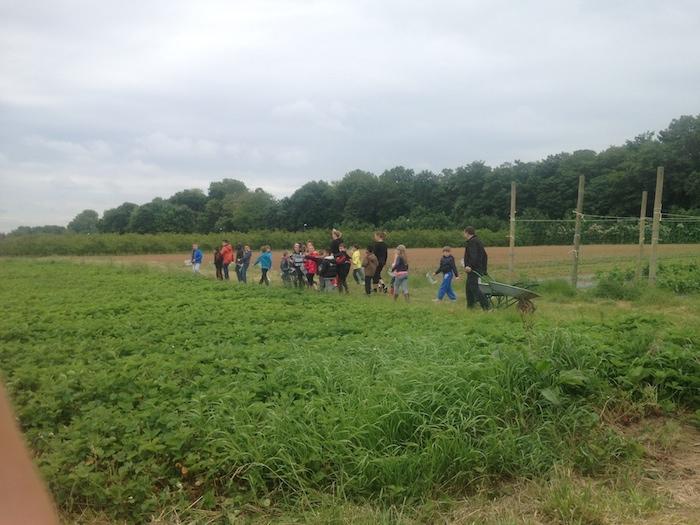 Les Vergers de Champlain à La-Queue-en-Brie / DR