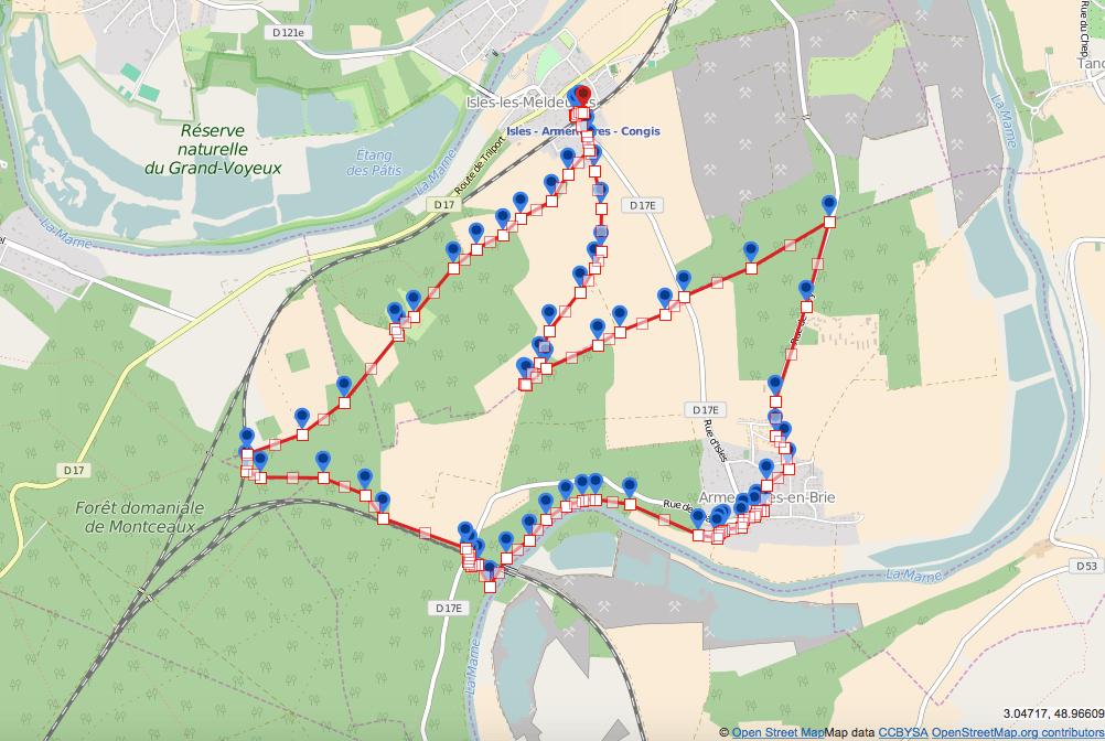 Forêt de Montceaux / La Marne