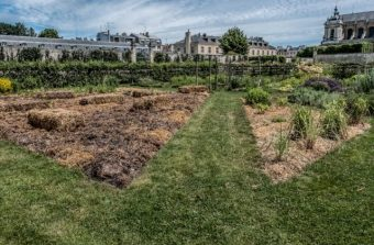 Potagers urbains ou parcs de châteaux, les jardins franciliens vous ouvrent leurs portails