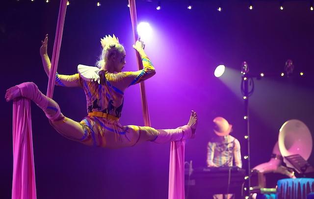 Carnival au Cirque électrique / © Hervé PHOTOGRAFF