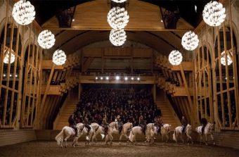 Les chevaux danseurs étoiles de Bartabas reprennent du service à Versailles