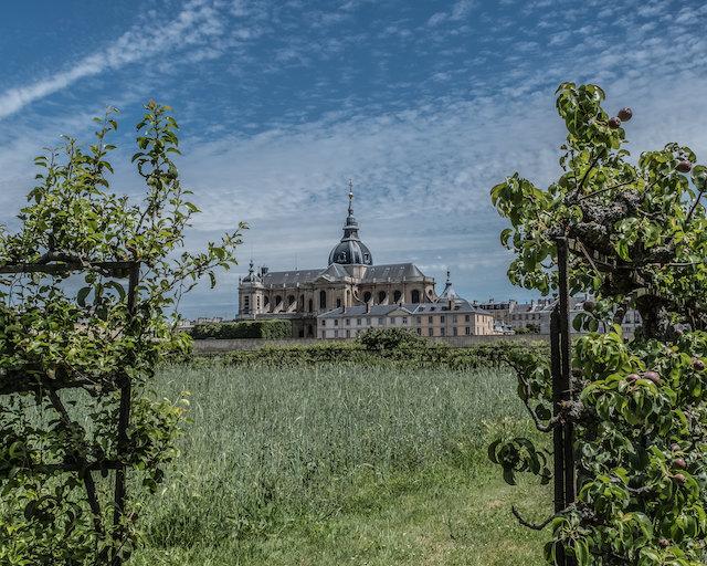 Le Potager du Roi à Versailles - L'Océan Vert / © Jean-Fabien Leclanche pour Enlarge Your Paris