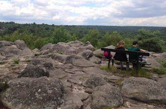 La forêt de Fontainebleau en course pour devenir le 5e site francilien classé au patrimoine mondial