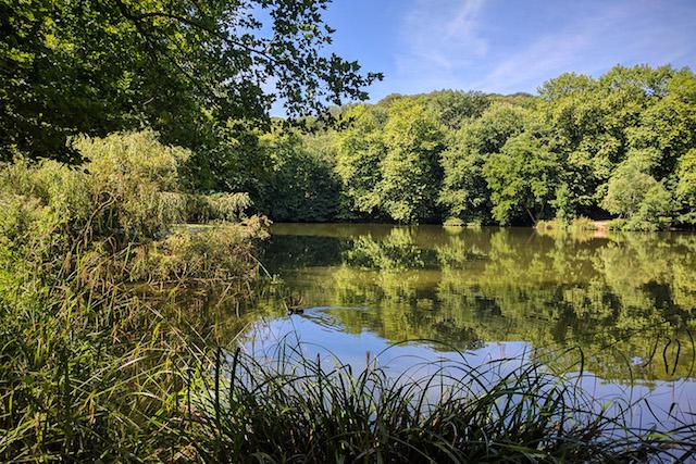 Les étangs de Meudon / © Helloways