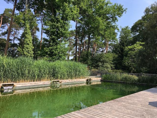 La piscine naturelle du camping Huttopia / © Steve Stillman pour Enlarge your Paris