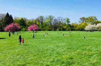 Les cinq plus grands parcs du Grand Paris où profiter du soleil