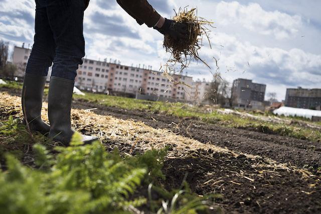 La ferme urbaine de Saint-Denis / © JP Sageot