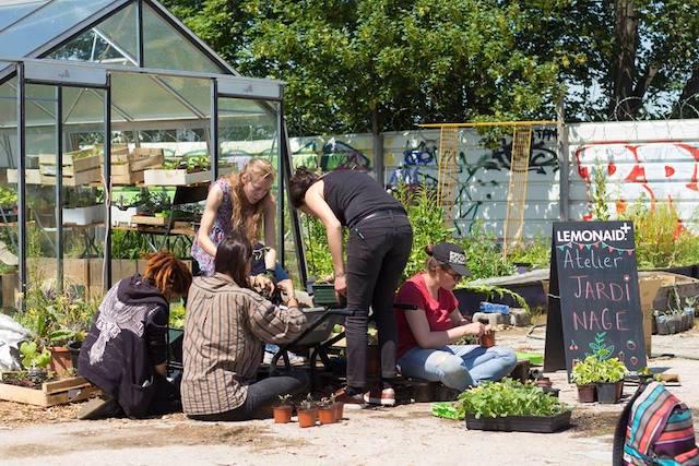 Les équipes de la SAUGE (Société d'agriculture urbaine généreuse et engagée) qui seront présentes pour Inspirations végétales à Montrouge / © La SAUGE