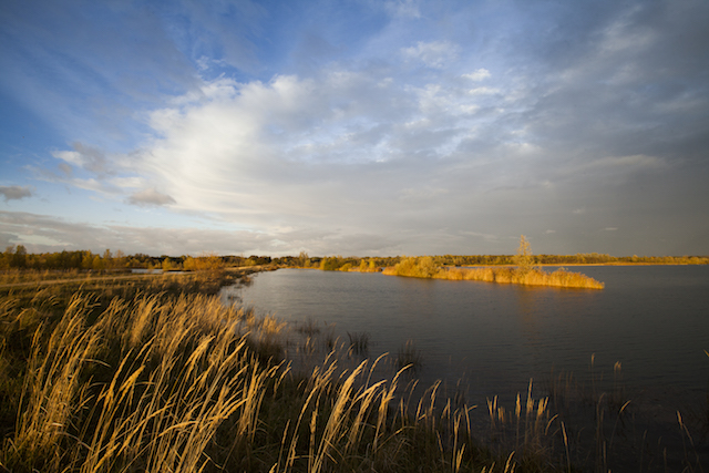 Réserve naturelle du Grand-Voyeux / © AEV Hellio Van Ingen