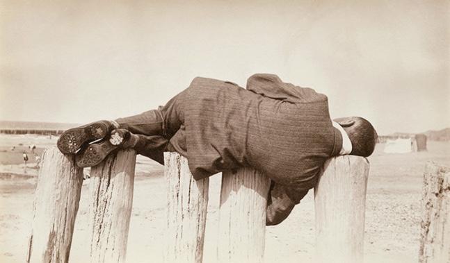 """Photographie extraite de l'exposition """"The Rose Elephant"""" à la galerie Lumière des Roses à Montreuil / DR"""