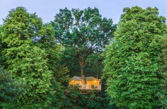 Trois escapades nature autour de Paris