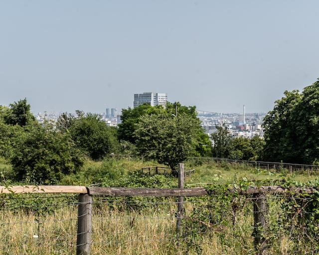 La vue depuis le parc des Lilas à Vitry / © Jean-Fabien Leclanche pour Enlarge your Paris