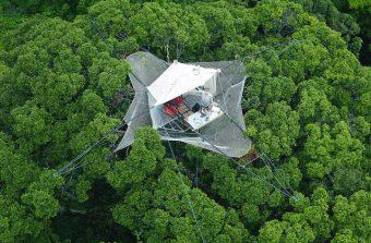 Cime City, une ville éphémère dans les arbres à Evry