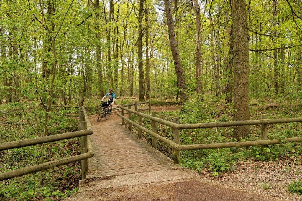 La forêt de Sénart / © Sortir de Paris à vélo