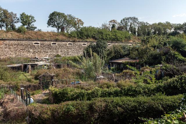 Les Jardins ouvriers du Fort de l'Est dans le quartier du Franc-Moisin à Saint-Denis / © Jean-Fabien Leclanche pour Enlarge your Paris
