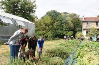 Les week-ends «Les mains dans la terre» vous amènent à la rencontre des agriculteurs urbains