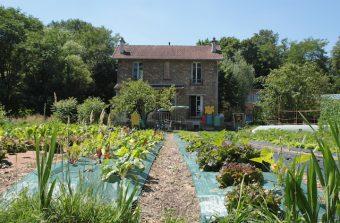 V'île Fertile expérimente le maraîchage bio en bordure du bois de Vincennes