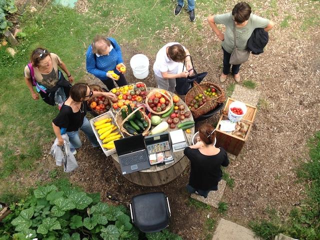 Vente de légumes chez V'Île fertile dans le Jardin d'agronomie tropicale à Nogent-sur-Marne / © V'Île fertile