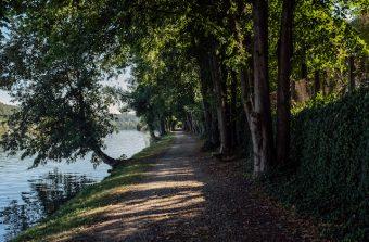 Paris-Fontainebleau, une odysseine à vélo
