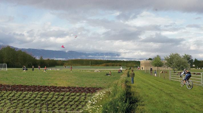 Parc agro-urbain à Genève / © Agence Fabriques