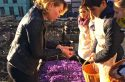 Du safran Made in Paris en vente dimanche à l'Institut du monde arabe