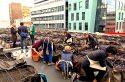 Des cultivatrices de safran ouvrent la ruée vers l'or rouge sur les toits de Paris