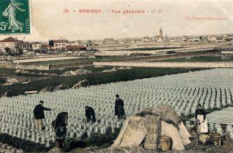 Quand l'alimentation dessine le territoire, l'histoire des relations entre Paris et sa périphérie agricole