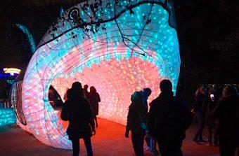Espèces en voie d'illumination, une expo qui a de la gueule