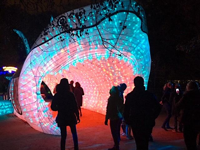 Especes En Voie D Illumination Une Expo Qui A De La Gueule