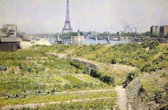 Du chou-fleur de Vaugirard à la pêche de Montreuil, inventaire d'un patrimoine évanoui