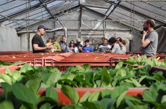 «Il y a urgence à sauvegarder les terres agricolesen région parisienne»