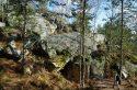 Neuf façons de profiter de la forêt de Fontainebleau