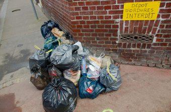Un week-end de collecte des déchets sauvages en Île-de-France