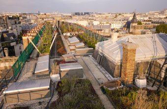 «L'agriculture urbaine rend de nombreux services à la ville»
