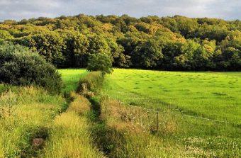 Plus de 100 circuits à télécharger pour explorer les Parcs naturels régionaux franciliens