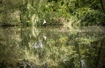 Gestion de l'eau : les limites des démarches participatives en matière d'environnement