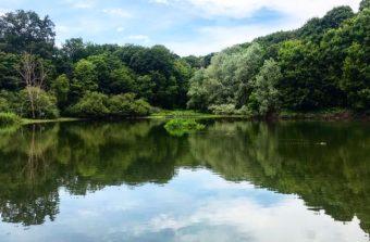 10 parcs et forêts où prendre l'air à moins de 10 km de Paris