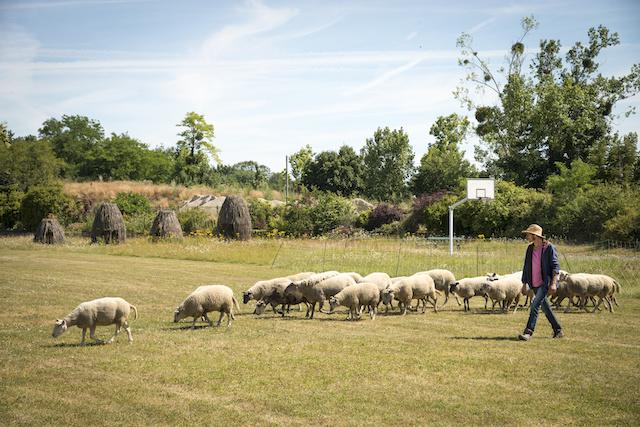 L'école d'horticulture du Breuil dans le bois de Vincennes à Paris / © Jérômine Derigny