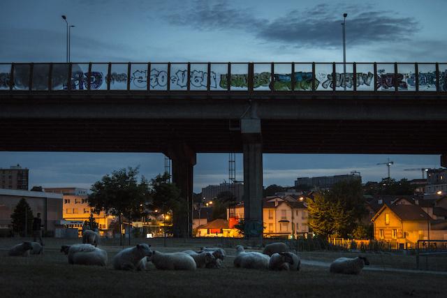 Bivouac sous le viaduc de l'A6 au parc du Coteau à Arcueil / © Jérômine Derigny