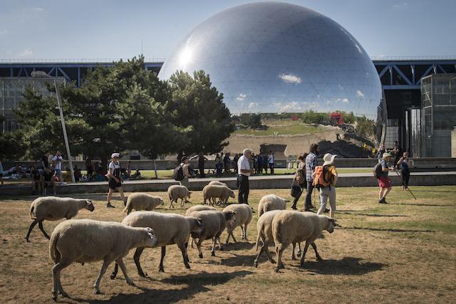 La Géode au parc de La Villette à Paris / © Jérômine Derigny