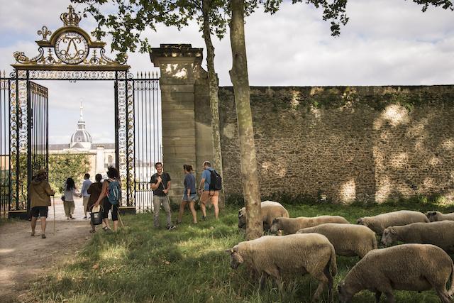 Entrée au Potager du Roi par la Grille du roi à Versailles / © Jérômine Derigny