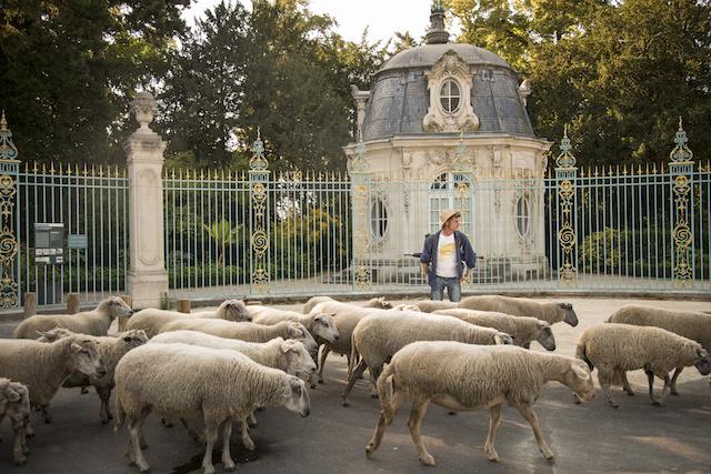 Le parc de Bagatelle dans le bois de Boulogne / © Jérômine Derigny