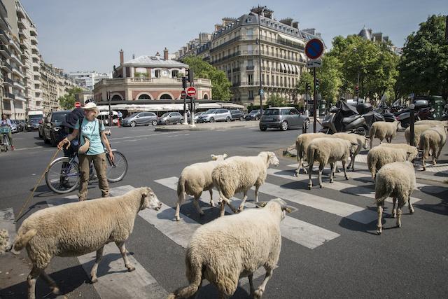 Paris et l'ancienne gare de La Muette dans le 16e / © Jérômine Derigny