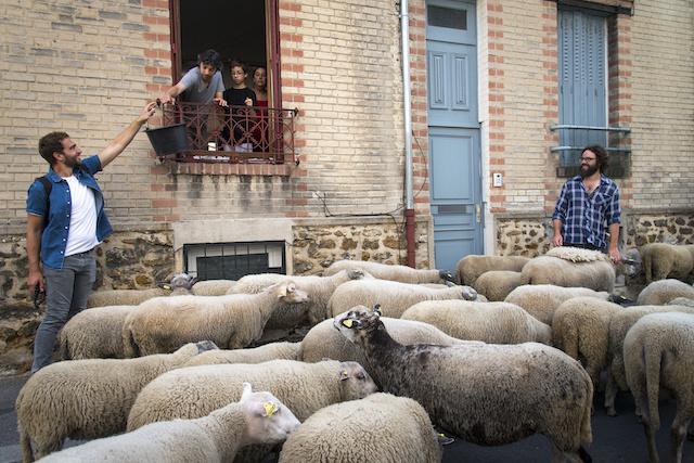 Les Lilas / © Jérômine Derigny