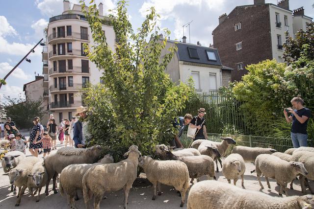 Devant le Parc Lucie Aubrac aux Lilas / © Jérômine Derigny