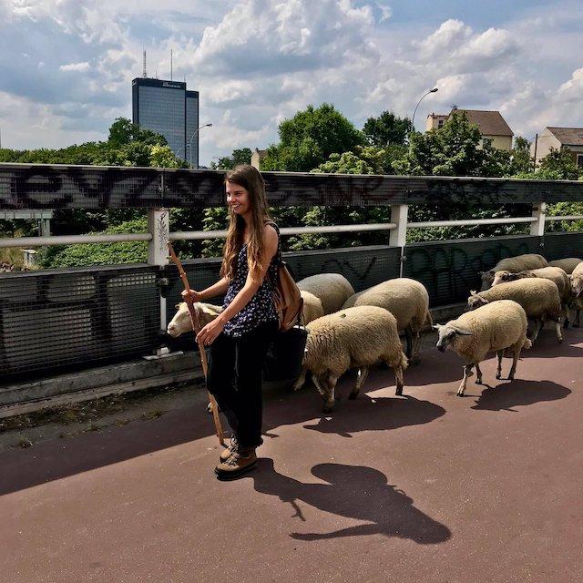 La Transhumance du Grand Paris lors de la 2e étape le 7 juillet entre La Villette et Montreuil / © Vianney Delourme pour Enlarge your Paris
