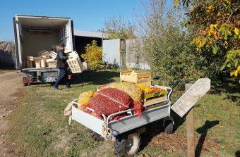 Les petits producteurs franciliens à l'heure de la livraison à domicile