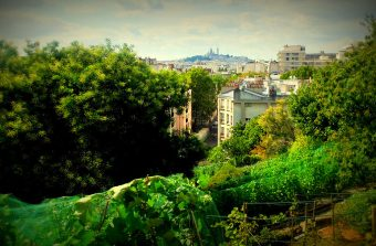 «Nous sommes en train de rompre avec une tradition urbanistique française qui négligeait la nature»
