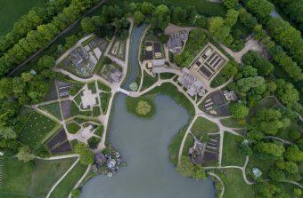 Un parcours au milieu des arbres admirables du château de Versailles