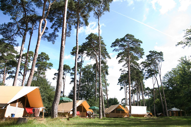 Camping Huttopia à Rambouillet / © Romain Etienne
